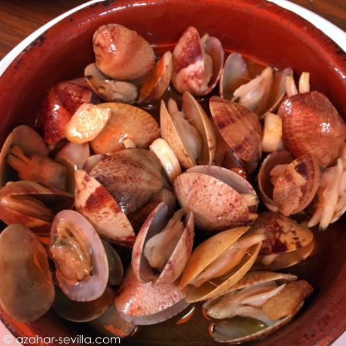 la cantina clams