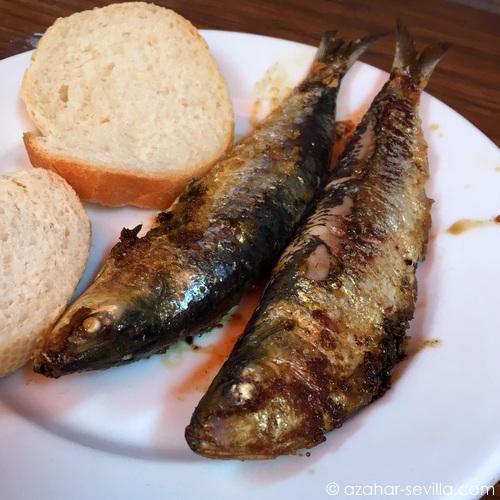 la cantina  sardinas