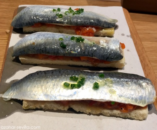 luz de mar sardinas